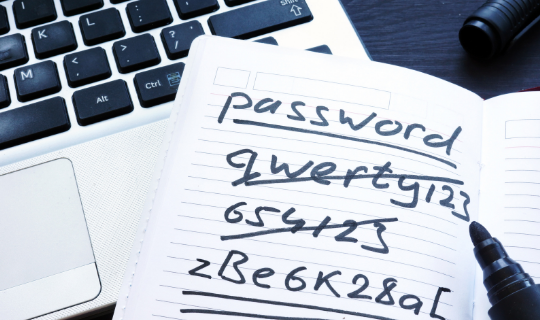 Notebook with password written and passwords crossed out